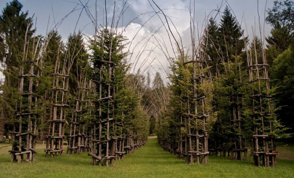 192.4 - Architecture naturelle :  La Cathedrale végétale de Giuliano Mauri