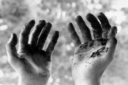 193.3 - Mettre les mains dans la terre rend heureux et intelligent...
