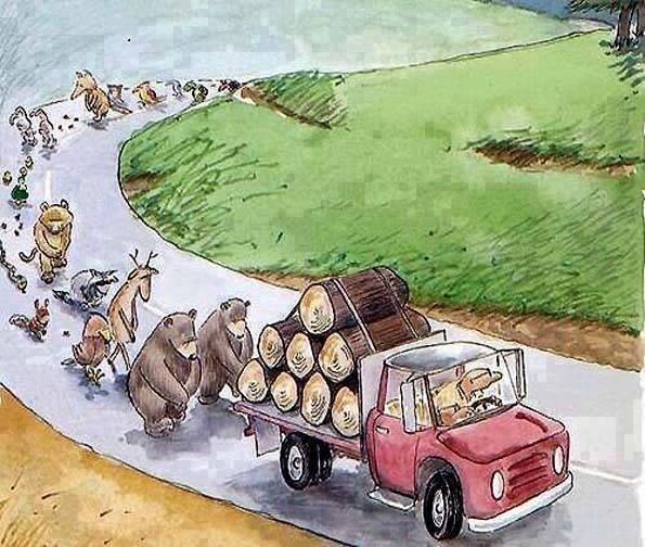 201.2 - L 'Ecologie, c'est la vie .....