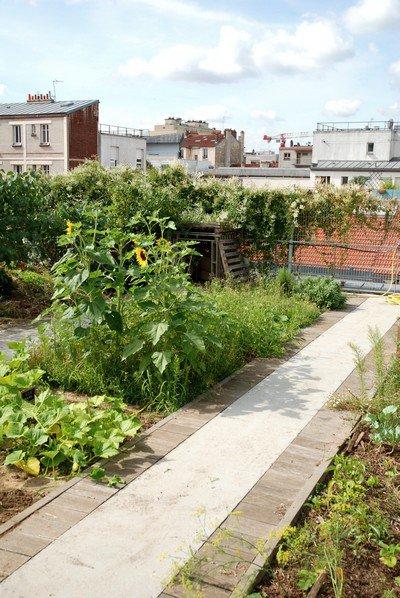 205.2 - Le jardin partagé sur le toit, rue Louise Weiss