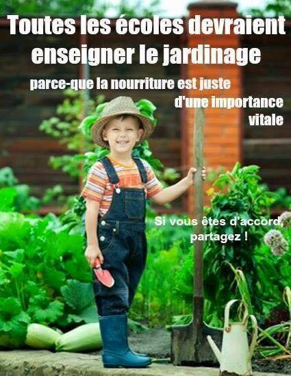 Initiez vos enfants à la protection de l'environnement  !