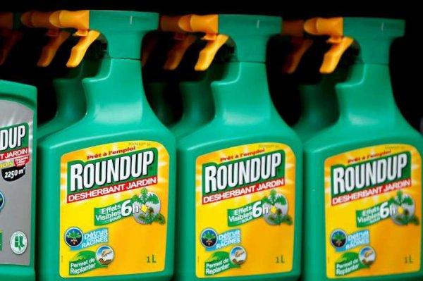 Faites un geste pour la planète  : Monsanto au Tribunal de la Hague en Octobre  2016, Signez la pétition !