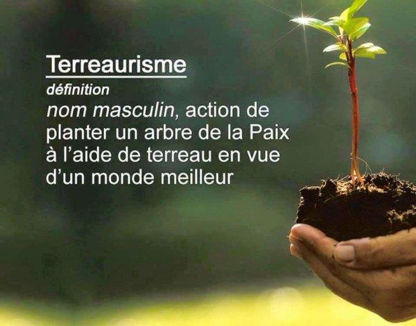 14 milliards d'arbres plantés grâce à cette simple idée
