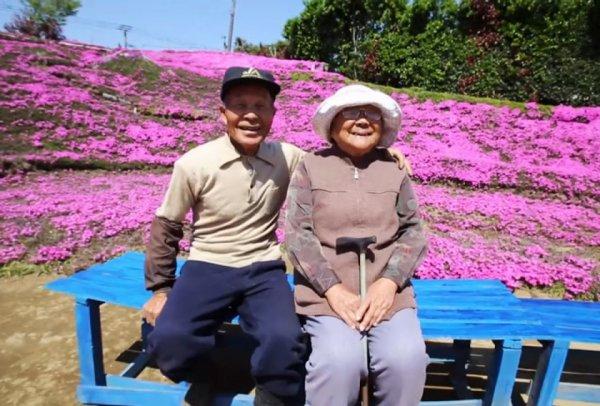 Une histoire d'Amour ....jardinée !