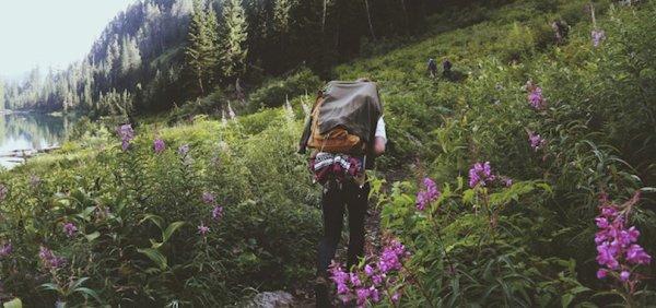 Les personnes qui aiment la nature sont plus heureuses, plus créatives et ont une meilleure santé