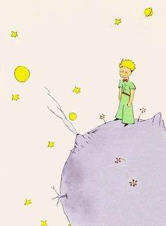 """""""Le Petit Prince raconte alors son histoire avec une rose. Un jour il assiste à la naissance d'une rose absolument superbe. Mais il découvre alors que l'amour qu'il développe pour elle est incompatible avec les épines de la fleur, coquette et exigeante... Il décide donc de quitter son astéroïde et part explorer les étoiles. ...""""Antoine de St Exupéry - """"le Petit Prince"""")"""