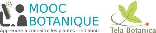 Ouverture d'un MOOC Botanique par Tela Botanica