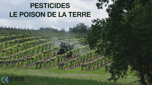 """Charente et Gironde : """"Pesticides, le poison de la terre"""", un documentaire vu , mardi 6 septembre sur France 5 et à revoir sur pluzz.fr"""