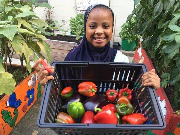 """Des légumes au secours des élèves en difficultés & """" A voix haute """" en Seine St Denis"""