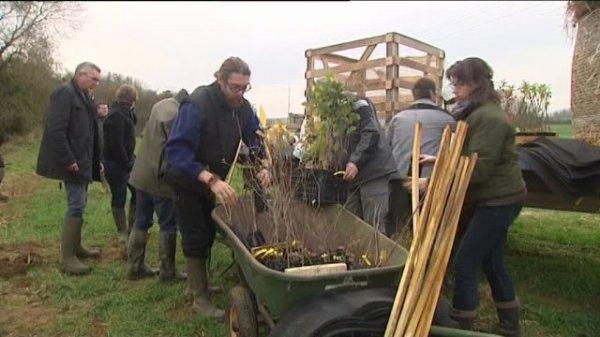 Les haies, un atout pour l'environnement expliqué à Chargey-les-Gray (Franche-Comté / Haute-Saône)