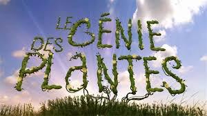 Voir & Revoir  : Le Génie des plantes  - Série Documentaire sur Arte
