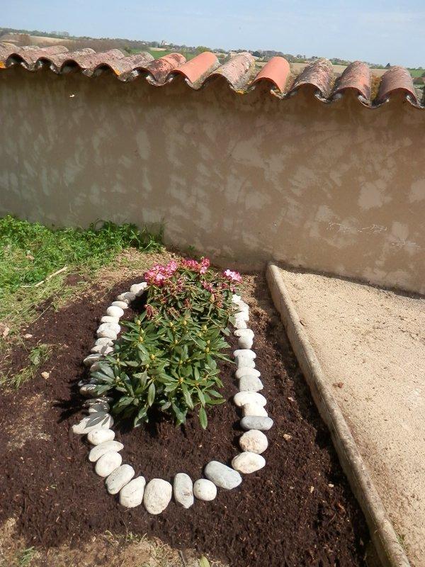 Ecorneboeufs: Comment cultiver des végétaux de terre de bruyère en sol argilo-calcaire ?