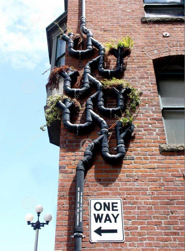 Des idées de façades végétalisées...