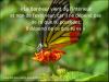 """""""Sème  un acte ,  tu récolteras une habitude, sème une habitude, tu récolteras un caractère, sème un caractère, tu récoltera une destinée"""". Dalaï Lama"""
