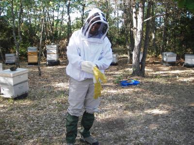 apiculteur aubagne