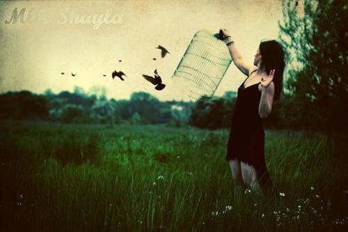 La liberté est une peau de chagrin qui rétrécit au lavage de cerveau.