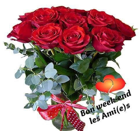 des belles fleurs