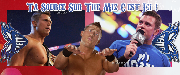 Blog Vendu a WWE--Style pour ooo/8oo chiffres + o/3X Kiffs tout les article + o/5 fan's + o/5 vraie commentaires à mettre sur Fights-Football !