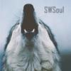 SWSoul