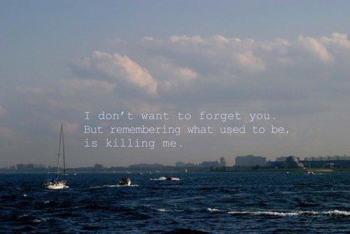 .   Il vaut mieux oublier et sourire que se souvenir et pleurer. Si seulement on pouvait oublier. .