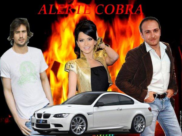 !!!!!!!!!!!!!!!!!!!!!!!!!!! ALERTE COBRA !!!!!!!!!!!!!!!!!!!!!