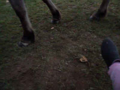 Mon pied et le sien