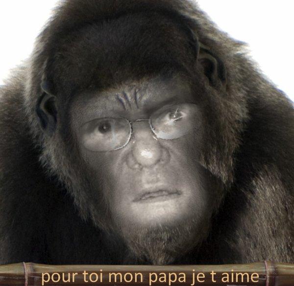 POUR MON PAPA DE COEUR BISOU
