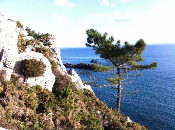 Non, je n'habite pas le sud de la France mais bien la Bretagne #5
