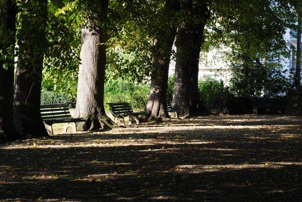 Parc du Thabor - Rennes #3