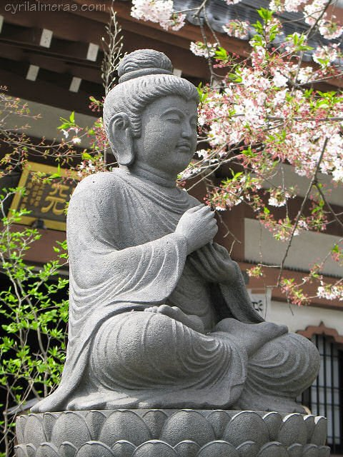 Relaxion Bouddha