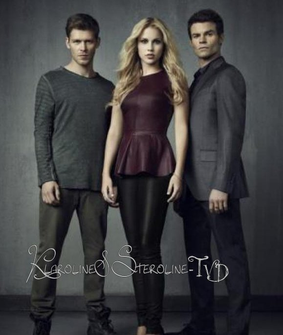 The Originals : le futur spin-off de The Vampire Diaries && Camille La Nouvelle Conquête De Klaus