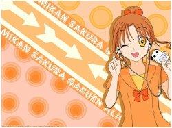 Présentation de Mikan pour Commu-Academie-Manga ^^