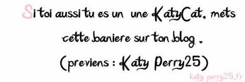 Etre un KatyCat