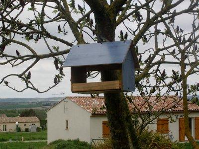 niche pour oiseaux