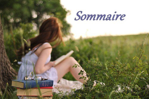 ~Sommaire~