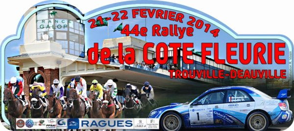 Rallye de la Cote fleurie 2014