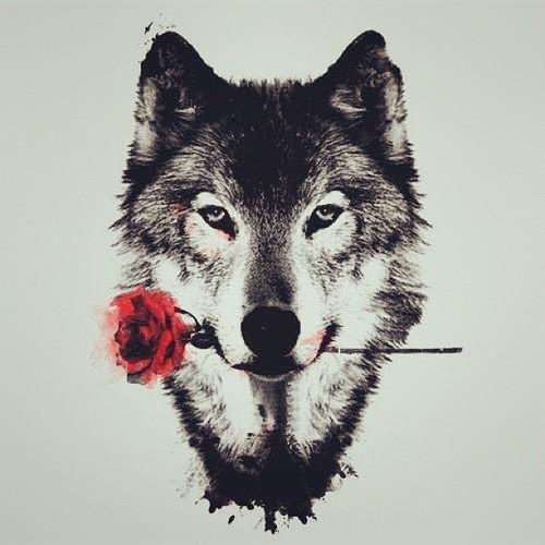 WOLF (2015)