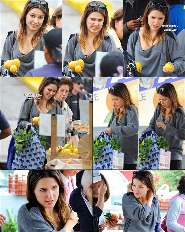 _ Sophia faisant ses courses pour acheter des légumes au marché quelque part dans Hollywood le 22 mai.