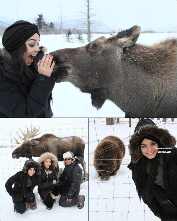 _ Vanessa, Stella et Gina en compagnie d'animaux en Alaska dont un élan la semaine dernière. ♥ _