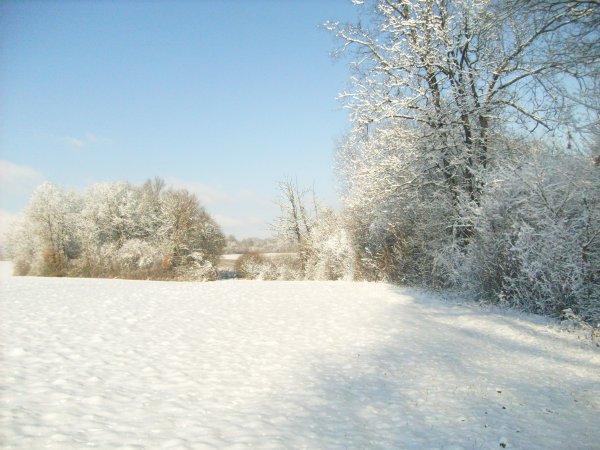 mardi 16 décembre 2008 17:53