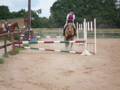 l' Equitation
