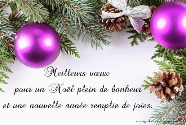 de belles et joyeuses fêtes de noel et nouvelle année
