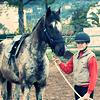 apprenez à écouter ce que votre cheval murmure à votre oreille. (1998)