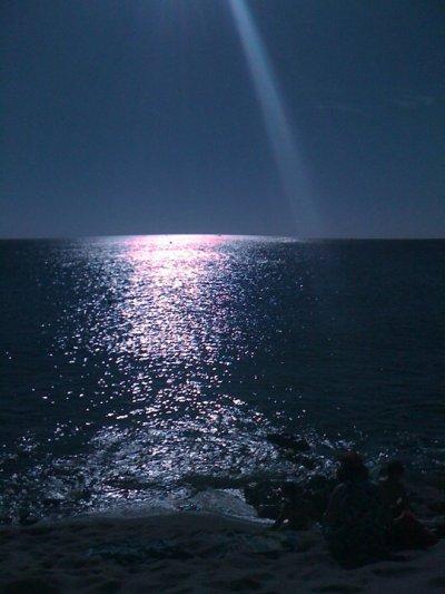mes vacances juin 2010 argeles sur mer