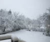 Est ce qu'il neige chez vous ??