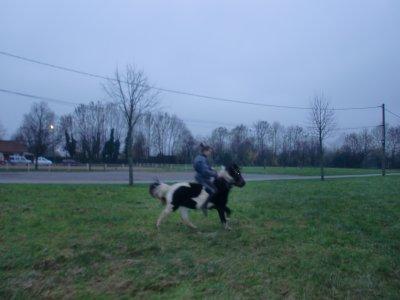 """"""" Cinq ans de pur bonheur grâce à l'équitation """""""