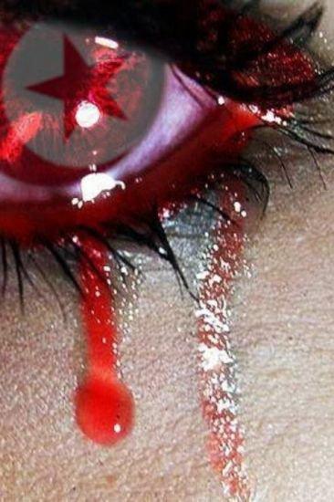 mon bled