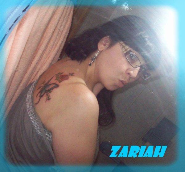 mon tatou papillon