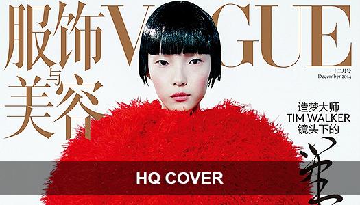 VOGUE CHINE DÉCEMBRE 2014 #1