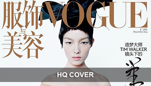 VOGUE CHINE DÉCEMBRE 2014 #2